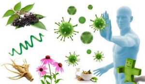 healthy diet to boost immune system naturally